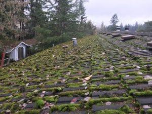 Concrete-Tile-Roof-Repair-Before