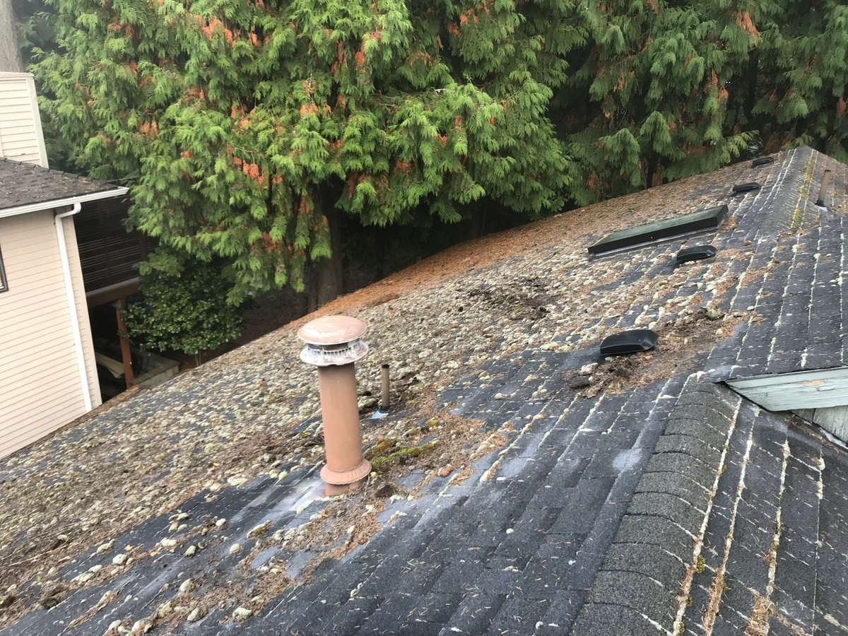 Composite-Roof-Cleaning-Before