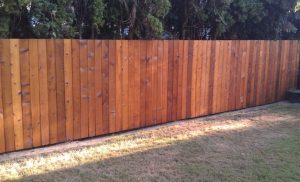 Outside-Fence-Cleaning