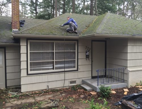 Composition Roof Cleaning Portland