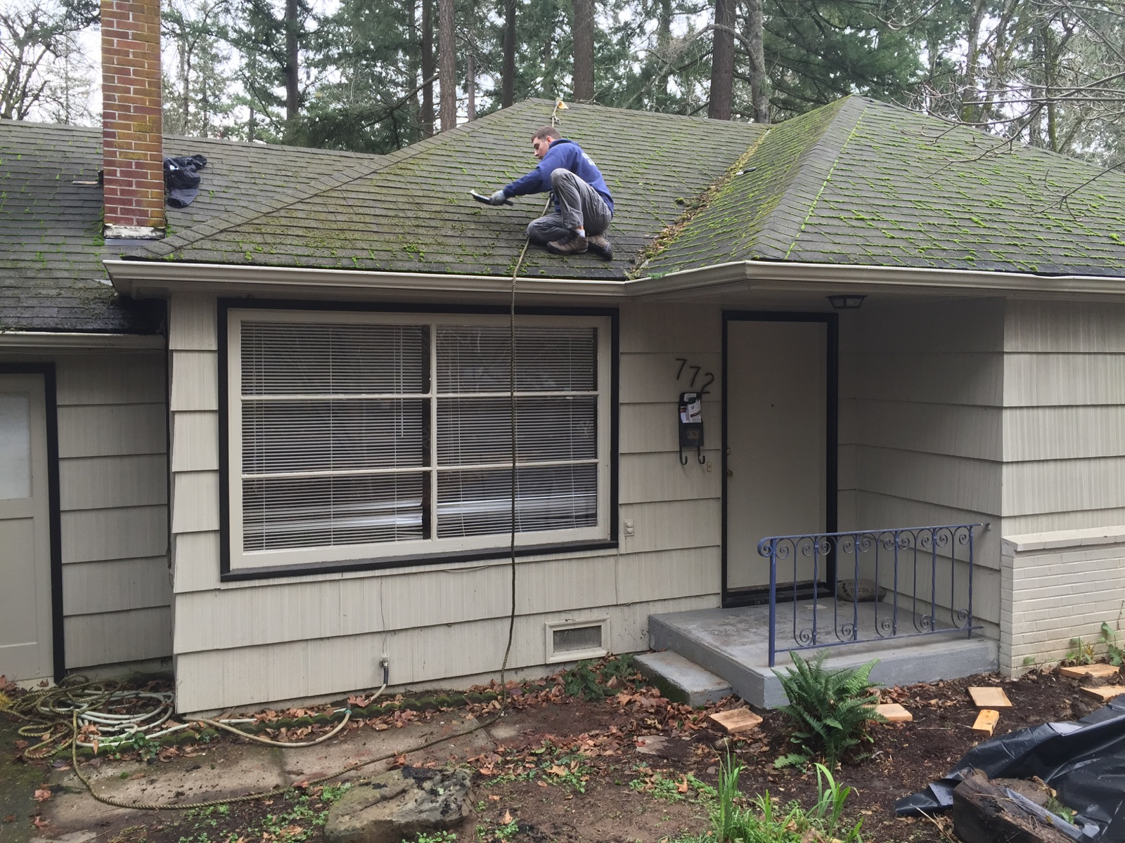 Portland-Composition-Roof-Cleaning