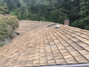 cleaned roof shingles