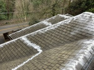 roof moss removal