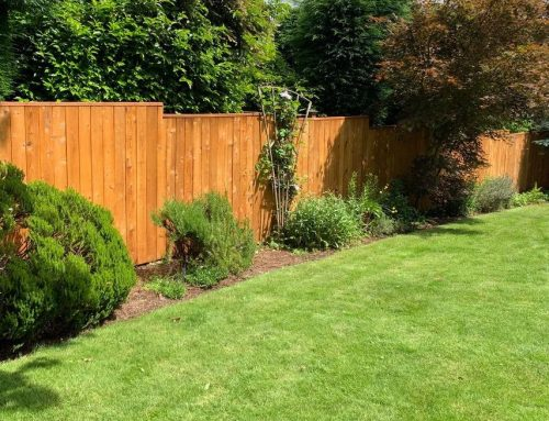 Fence Staining in Tigard, Oregon